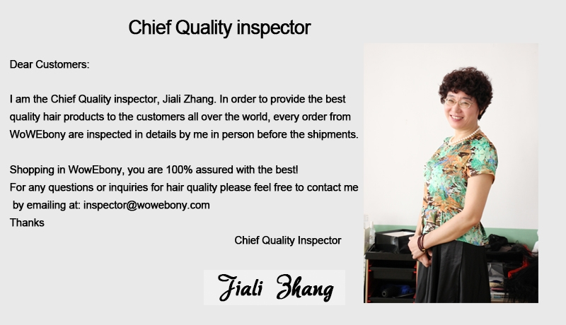 Chief Quality Control Inspector